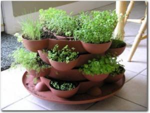 Indoor Herb Garden Kit - Stack-n-Grow