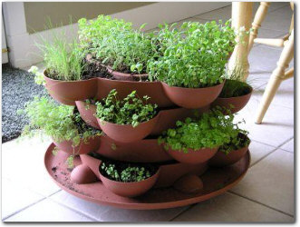 Indoor Herb Garden Ideas - Baking Naturally